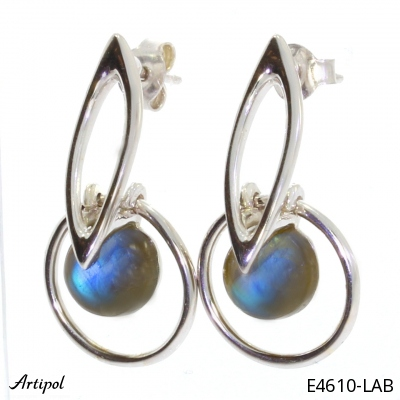 Earrings Black Onyx