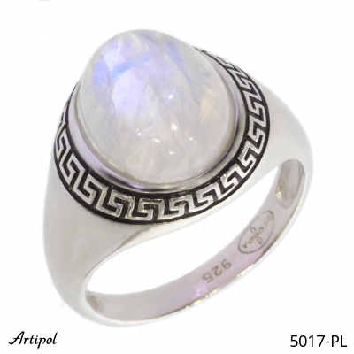 Earrings Tiger's Eye