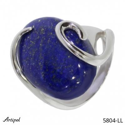 Earrings Labradorite